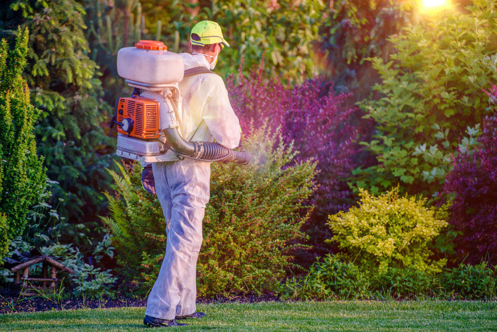 Pest Control Garden Spraying by Professional Gardener