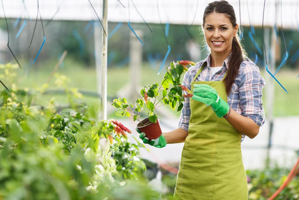 woman inside a greenhouse